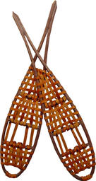 Snowshoes of Northern Pursuit