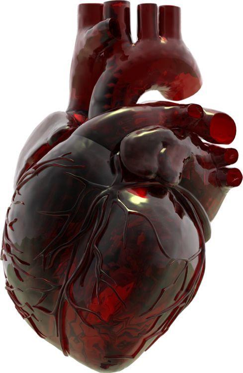 Kira's Heart