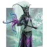 Grand Vizier Iubit Zeilørîn