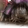 Underawl Fungus (Portal)