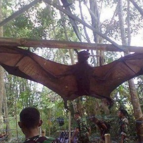 Giant Bat Mobat