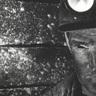 Raven of the Coal Mine