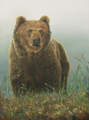 Bear, Brown
