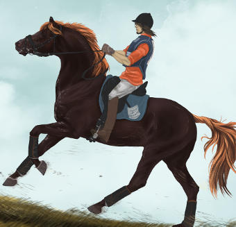 Horse, Riding