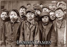 Lamms Lämmchen