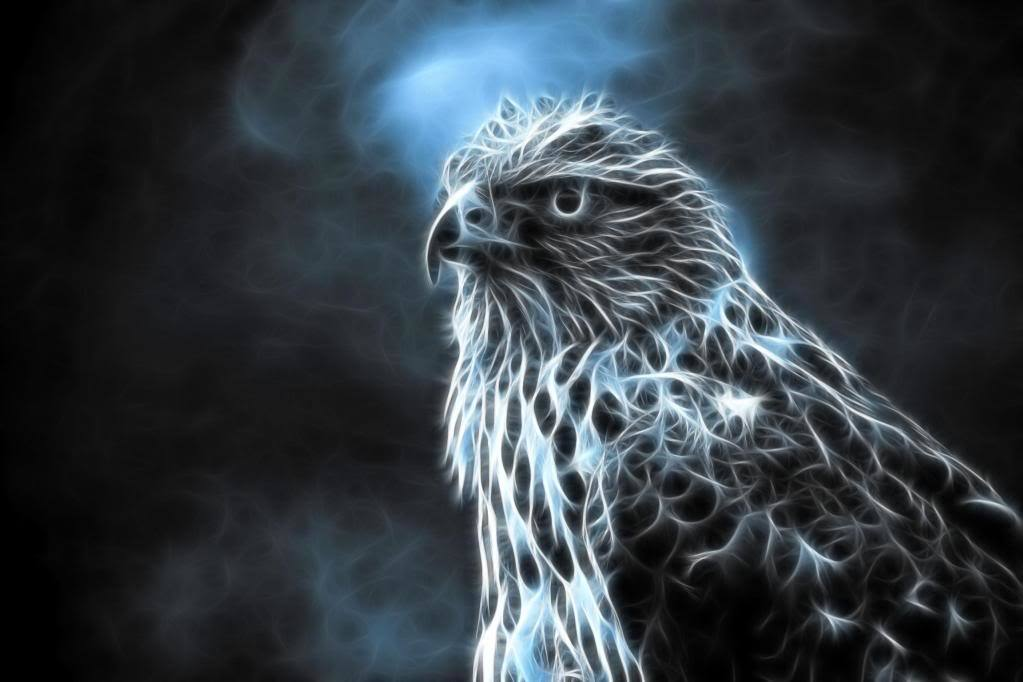 Spirit, Hawk (Pure)