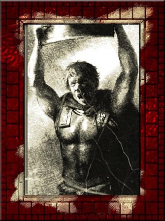 Aulius Furius Optius