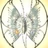 The Dusk Moth