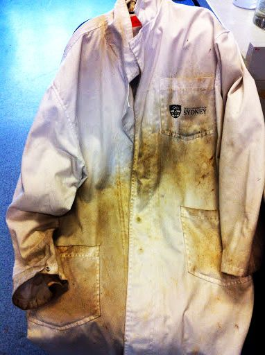 The Well-Flavored Lab Coat