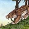 Shara (celestial dire tiger form)