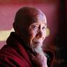 """Zhao Shu """"Iron"""""""