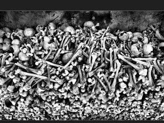 The Bone Swarm