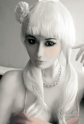 Elsidine Frost
