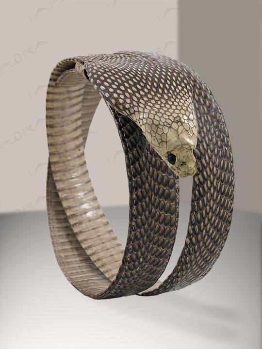 Belt of the Snake King