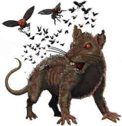 Vapour Rat