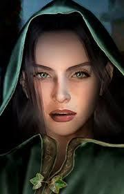 Vizeer Gendaria