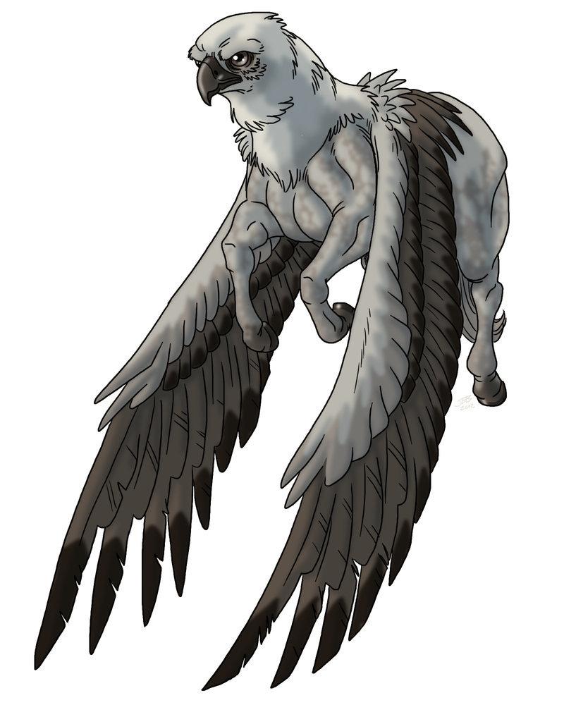 x Arcadian Hippogriff