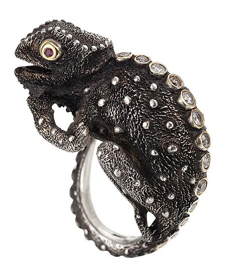 Ring of Chameleon Power