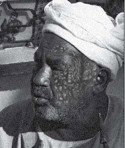 Faraz Najir