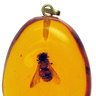 Amber Amulet of Vermin (Giant Bee)