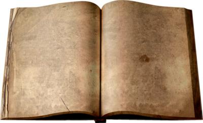El Diario de Polskavi