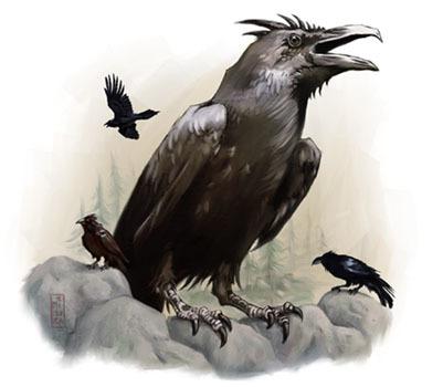 Nebb the Raven