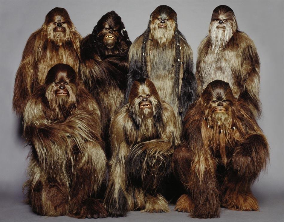 The Tooke's Crew