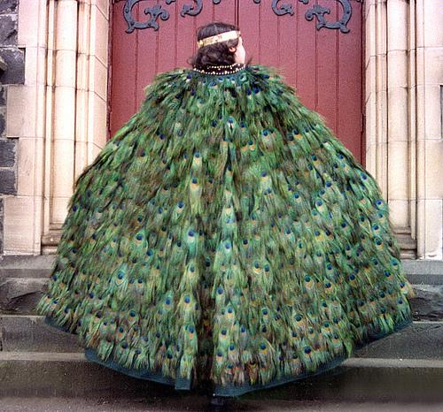 Feathered Cloak