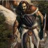 Arnwolf