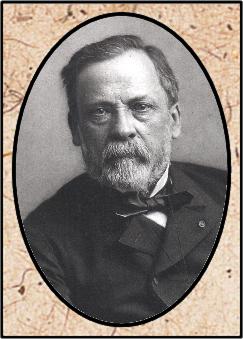 Tobias Ezrah