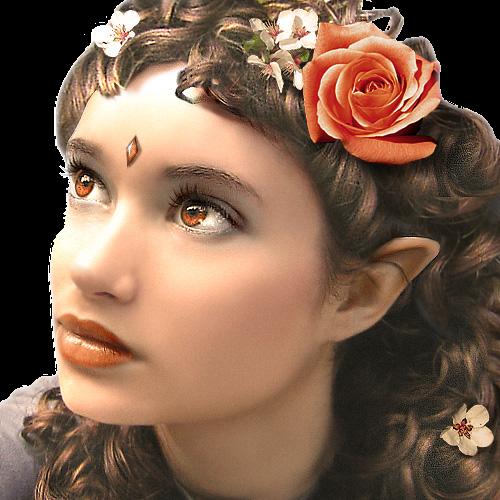 Indis Anwarünya