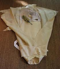 Aspasia's Shroud