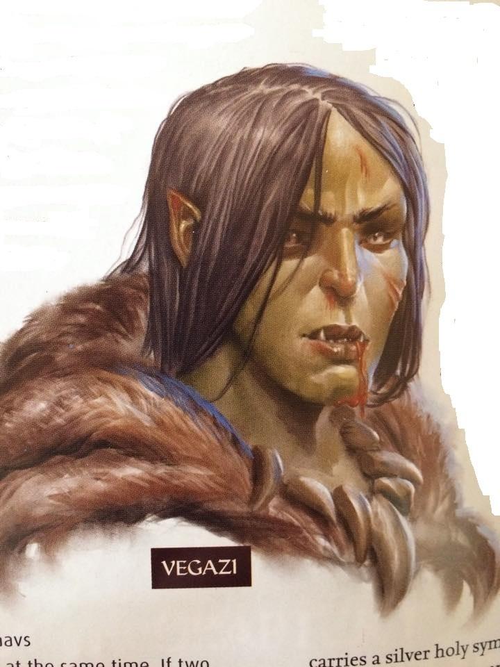 Vegazi