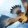 Swiftwind