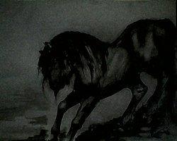 The Bleeding Horse