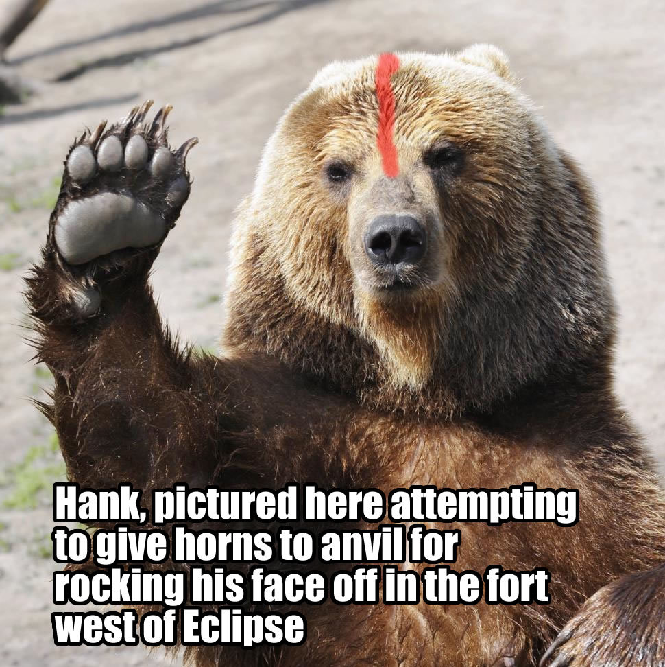 Hank the Bear