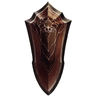 Shield of Dol Dorn