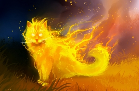Tuluin the Psychic Cat