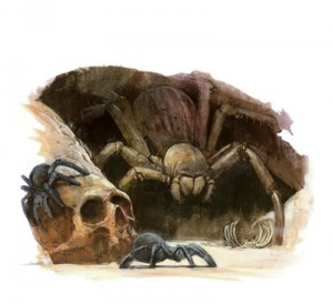Monstrous Spider (Small)