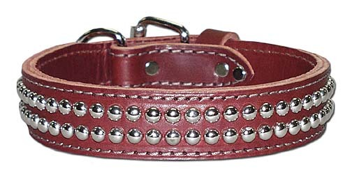 Iron Studded Collar
