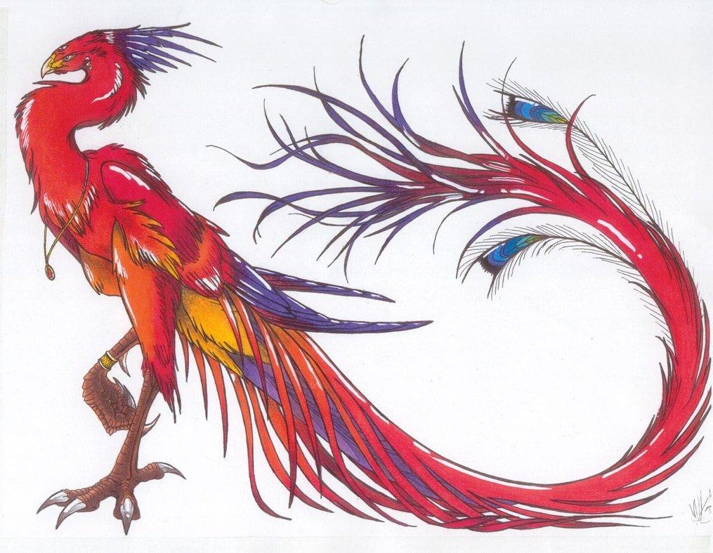 Suzaku Bird