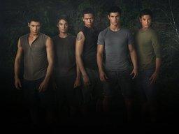 Kari's Brothers
