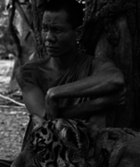 Thawi Udom