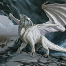 Young White Dragon