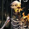 Pyre Bone (Skeleton)
