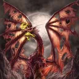 Dracochonne