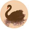 Orb, Black Swan