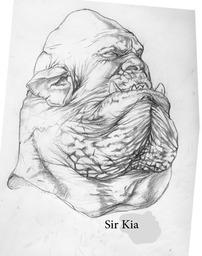 Sir Kai