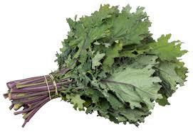 Farseer Kale