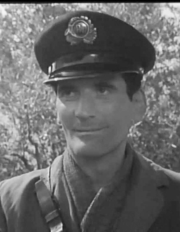 Lorenzo Dioli